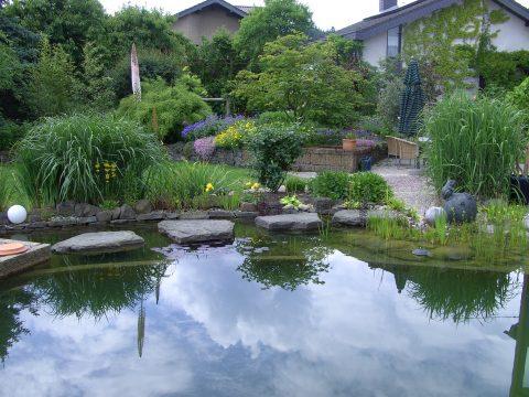 Beispielbild eines gestalteten Gartens